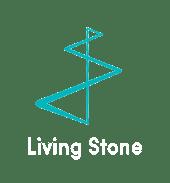 LS_logo_trans_footer